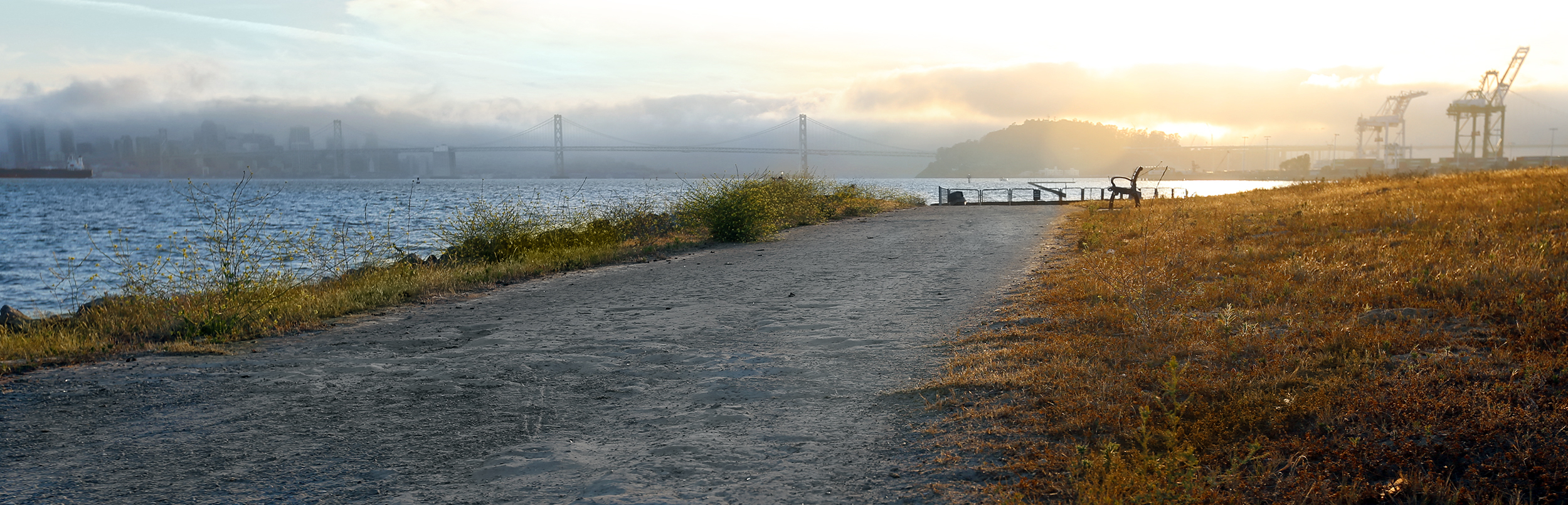 A view from Middle Harbor Shoreline in Oakland