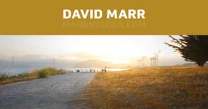 Portfolio of David Marr